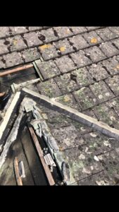 roofing company Winchester Roof moss killer needed